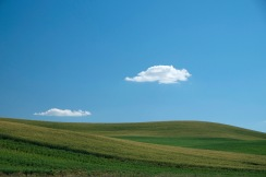 Gentle curves | Palouse, Washington