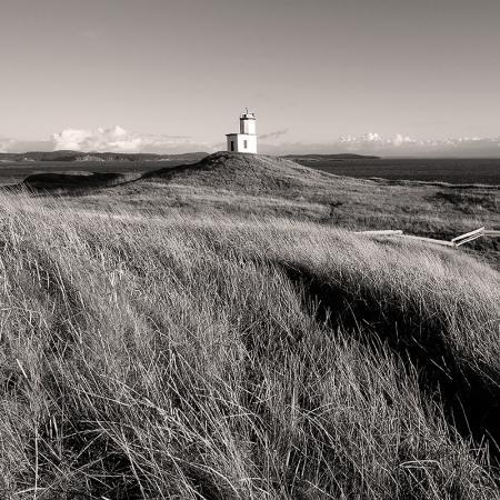 Cattle Point Lighthouse with coastal grasses, San Juan Island | Washington